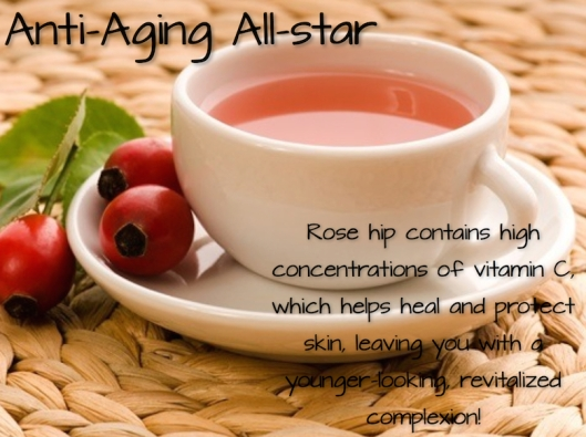 Rose Hip All-Star