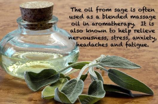 Sage Aromatherapy - Large