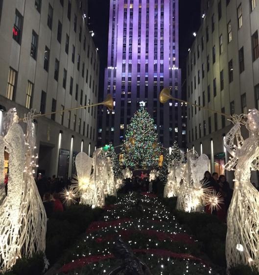 NYC Tree 2015